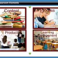 Differentiated Instruction: A Primer
